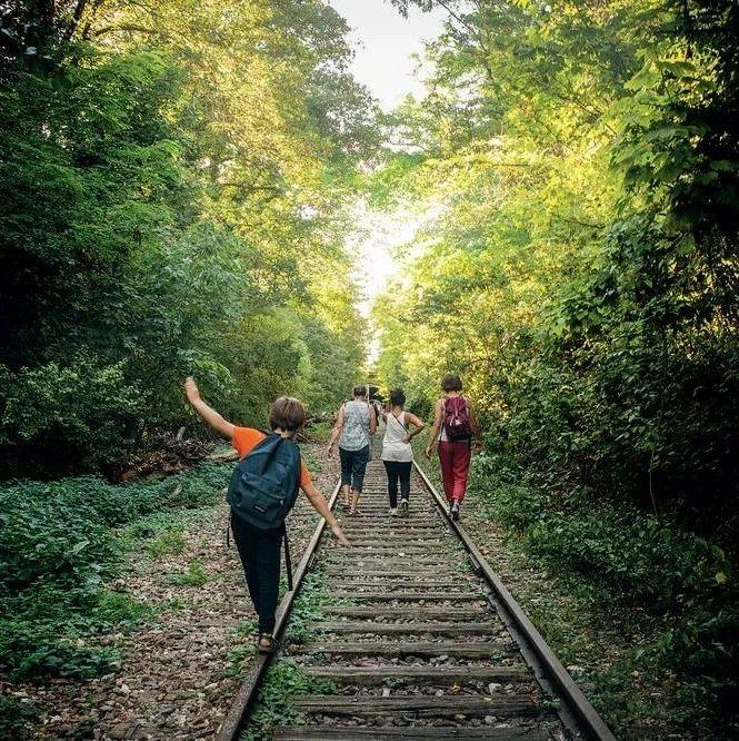 """, 敢在墓地里""""惊悚""""逃生吗?法国动物园万圣节限定版""""动物公墓""""!, My Crazy Paris"""